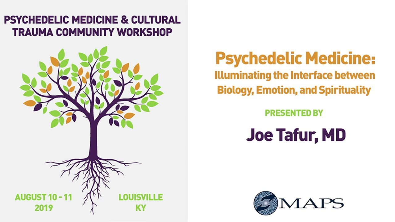 Psychedelic Medicine: Illuminating the Integration of Biology, Emotion, and Spirituality
