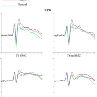 An ERP study on facial emotion processing in young people with subjective memory complaints