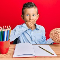 Neuroscience acting in children's learning process